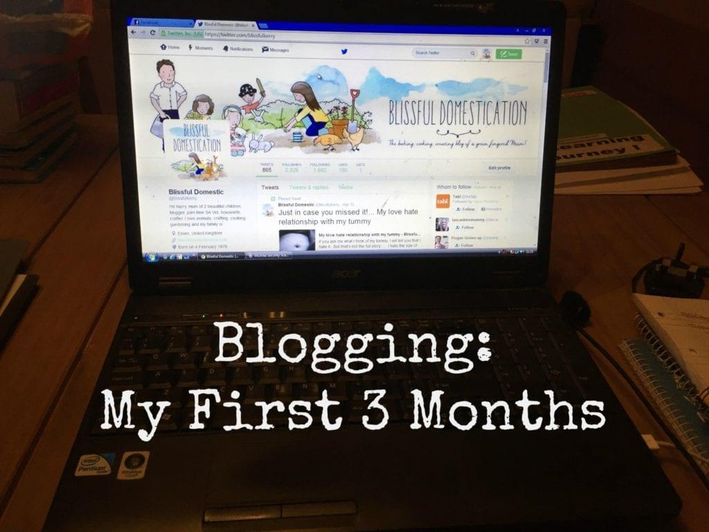 Blogging: My First 3 Months