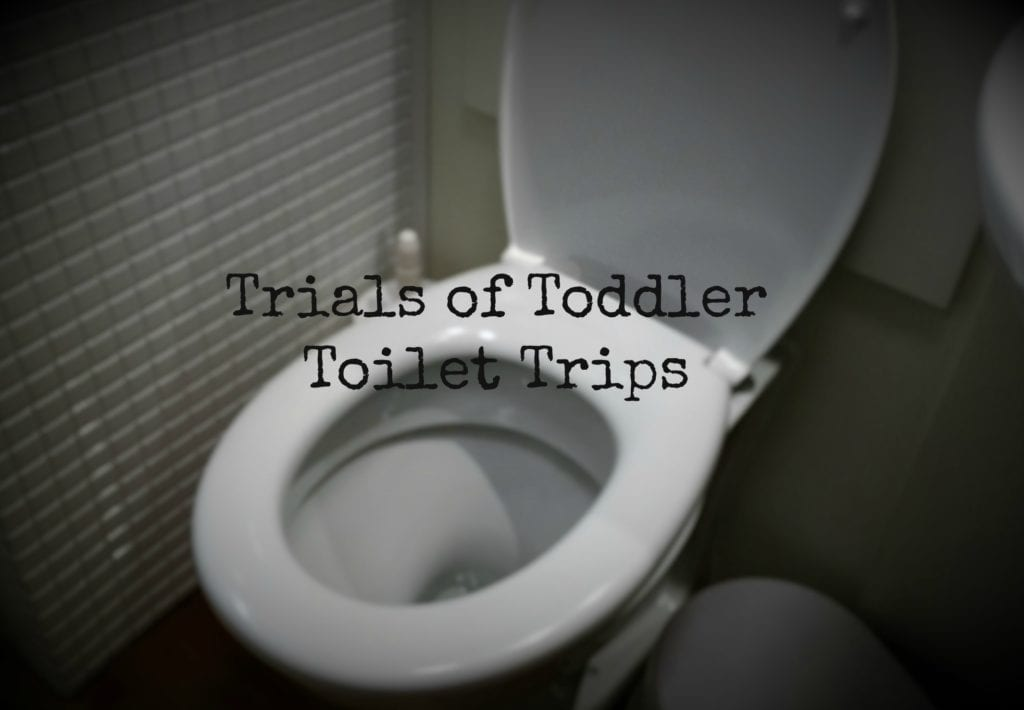Trials of Toddler Toilet Trips