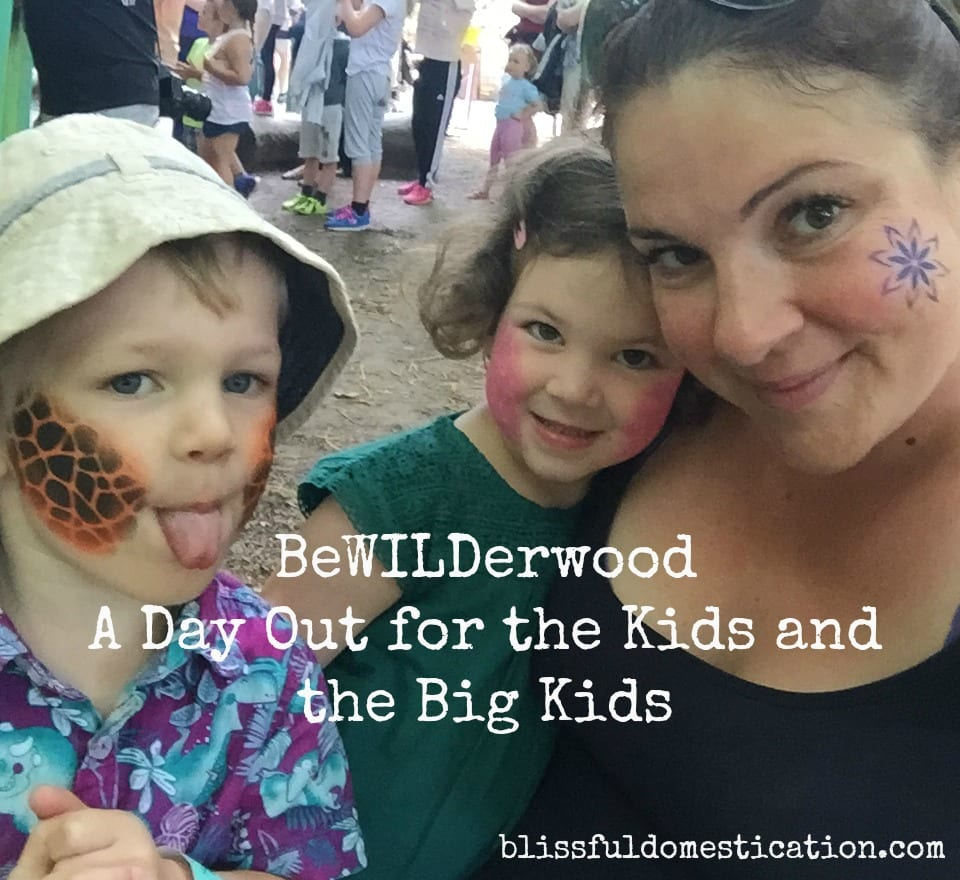 BeWILDerwood- a Great Day Out for the Kids and the Big Kids!