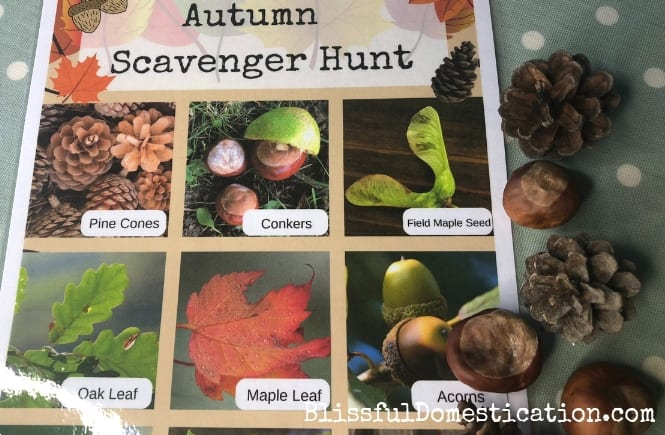 Autumn Scavenger Hunt for Kids with FREE Printable