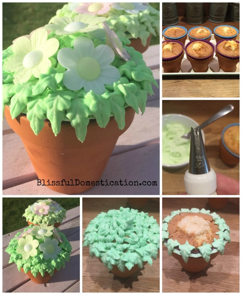 Flower Pot Cakes  sc 1 st  Blissful Domestication & Flower Pot Mini Cakes- Perfect for Mother\u0027s Day? | Blissful ...