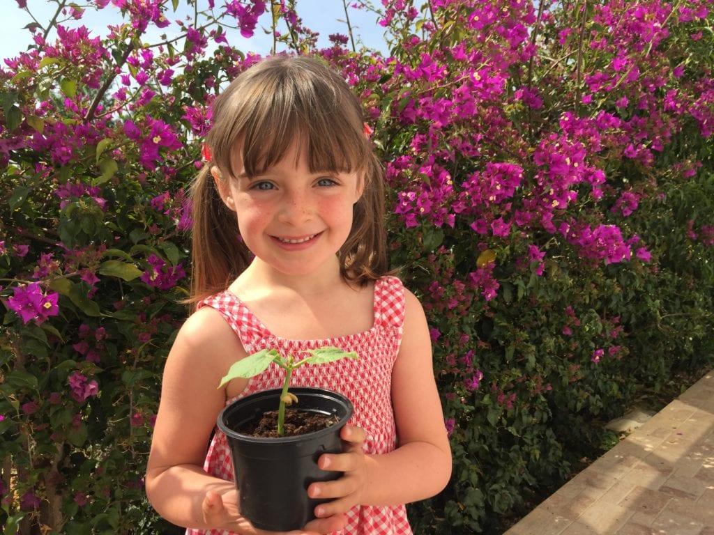 Positive Gardening