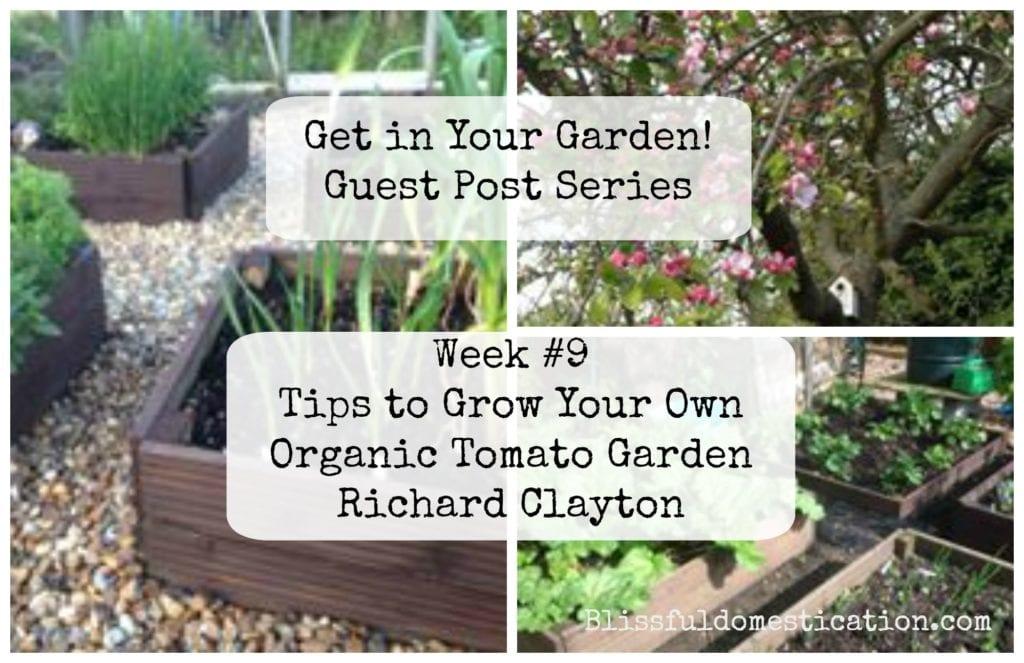 Get in Your Garden! Week #9