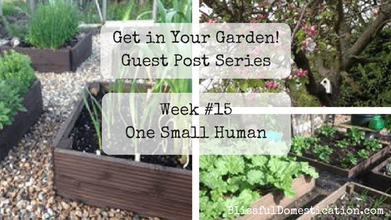 Get in Your Garden Week #15