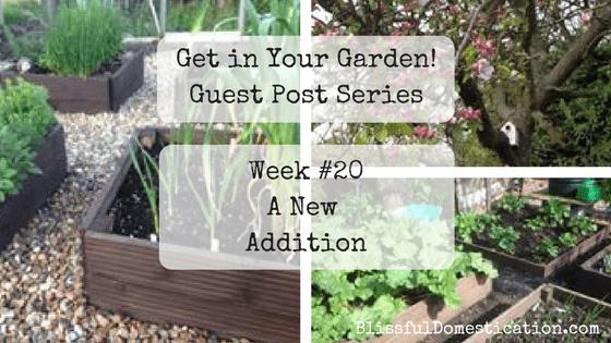 Get In Your Garden! Week #20