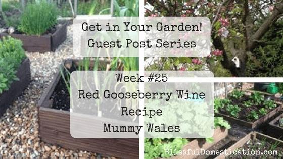Get in Your Garden! Week #25