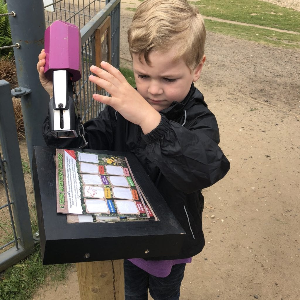 Oliver collecting stamps