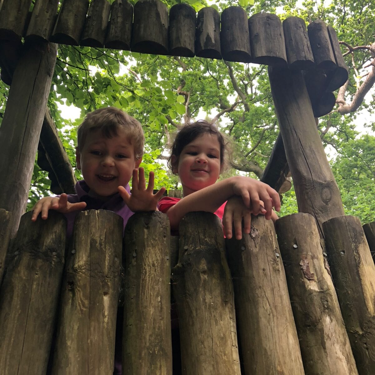 Kids in the treehouse