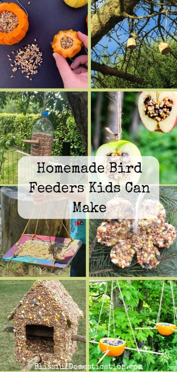 Pin for homemade bird feeders kids can make