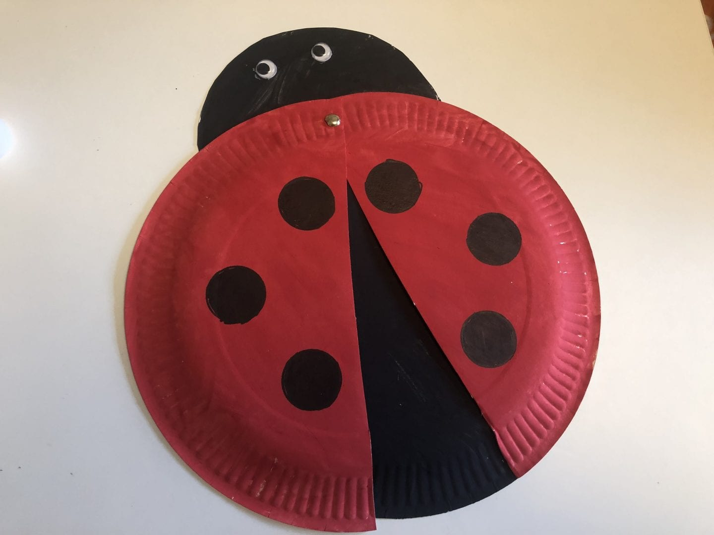 paper plate ladybird nearly assembled