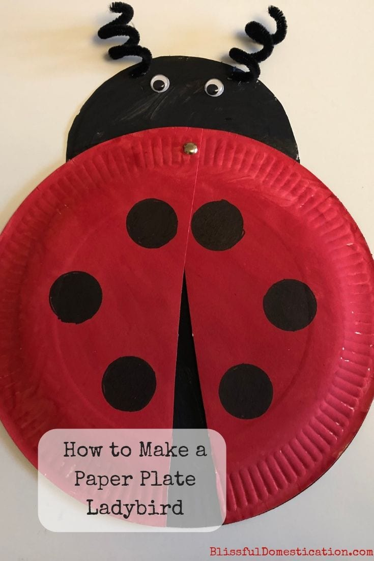 How to Make a Paper Plate Ladybird Pin
