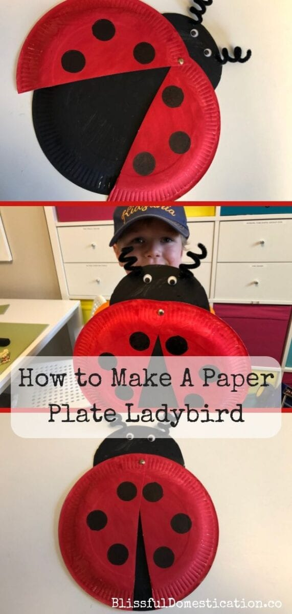 How to Make a Paper Plate Ladybird Craft pin
