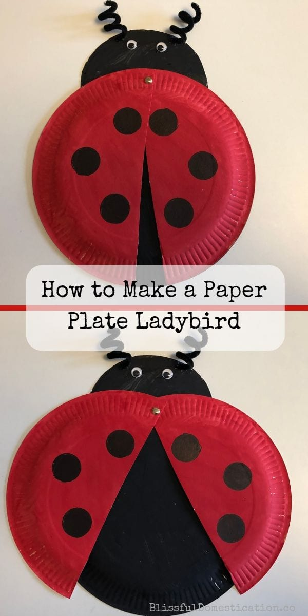 How to mkae a paper plate ladybird pin