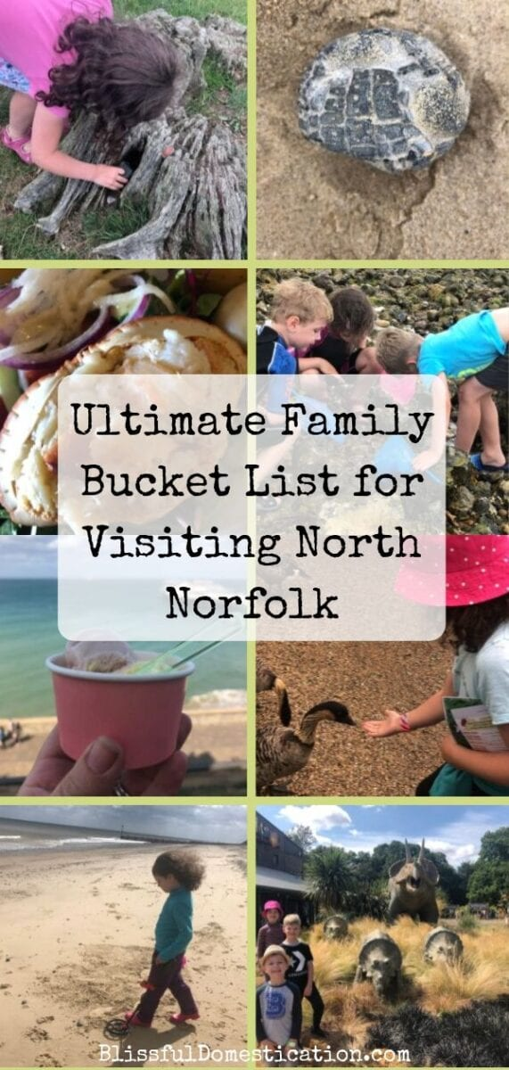 Ultimate Family Bucket List for Visiting North Norfolk PIn