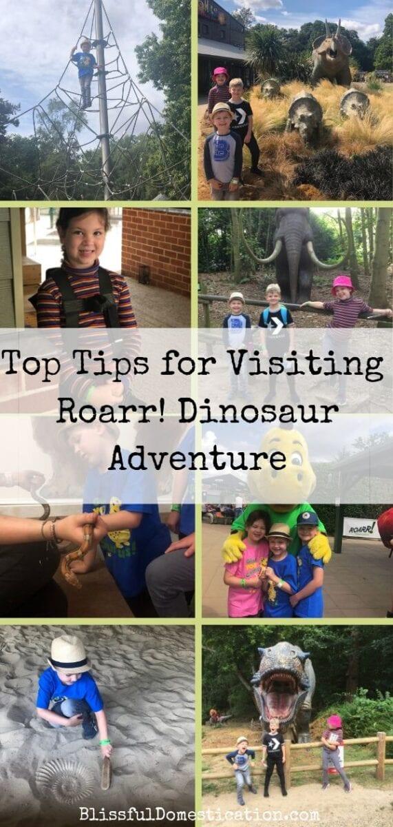 Top Tips For Visiting Roarr! Dinosaur Adventure PIn