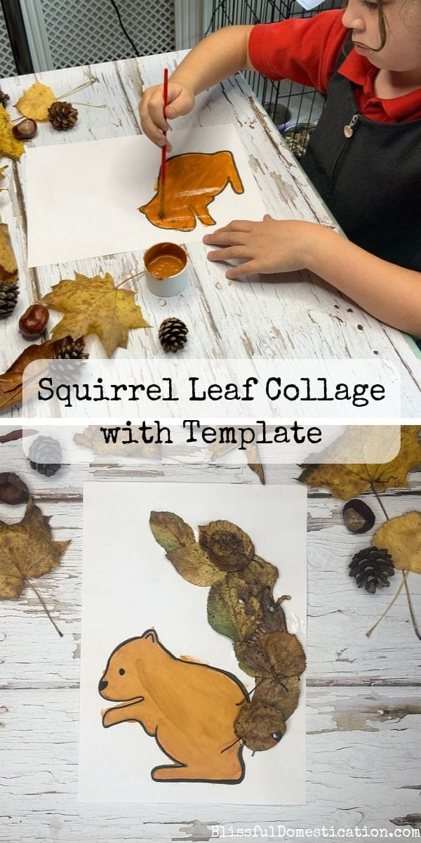 Pin for Squirrel Leaf Collage post