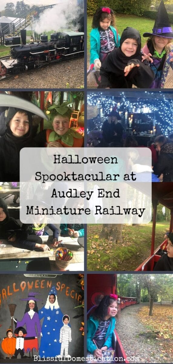 Audley End Miniature Railway Halloween Spooktacular pin