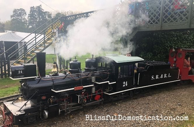 The steam train at Audley End Minature Railway