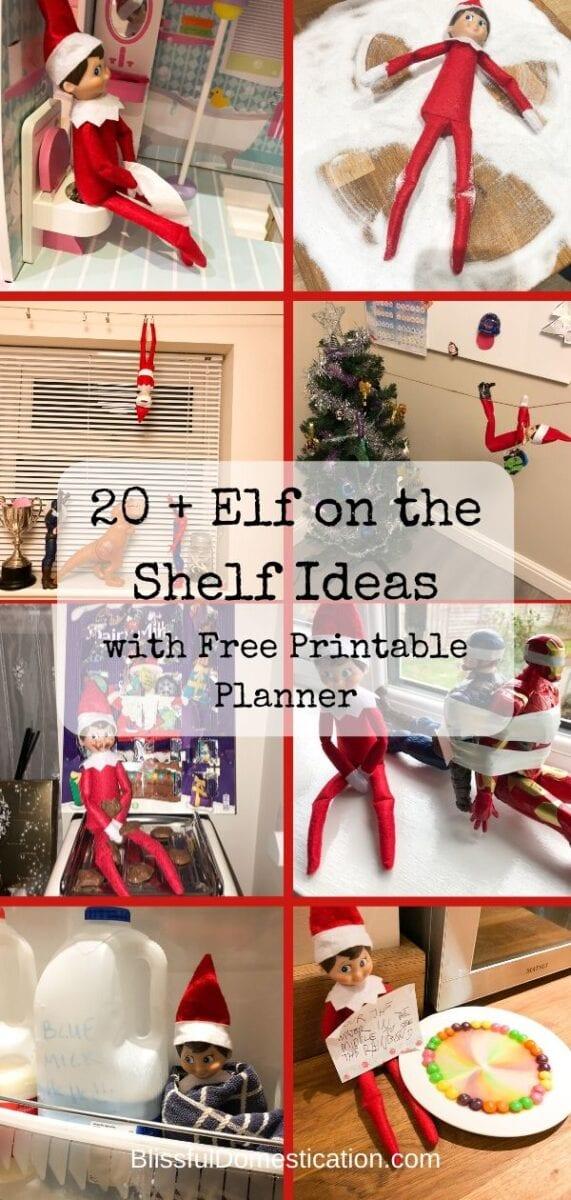 Elf on the Shelf Ideas Pin
