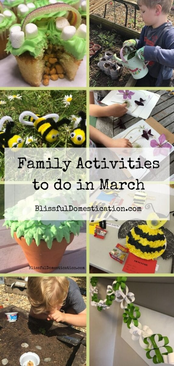 Family activities to do in March Pin